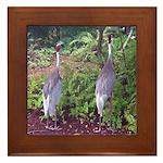 cranes Framed Tile