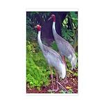 cranes Sticker (Rectangular)