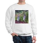 cranes Sweatshirt