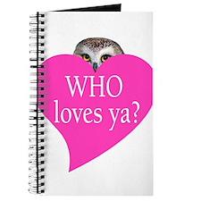 owl valentine Journal