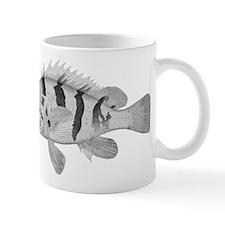Black Banded Rockfish Mug