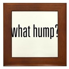 What Hump? Framed Tile