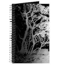 Desire Journal