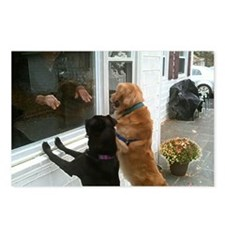 Lulu + Ranger at the Window Postcards (Package of