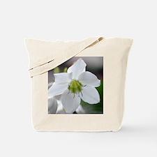 Narcissus Flower Tote Bag