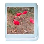 ibis baby blanket