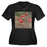 ibis Women's Plus Size V-Neck Dark T-Shirt