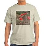 ibis Light T-Shirt