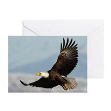 Eagle Flight Greeting Cards (Pk of 20)