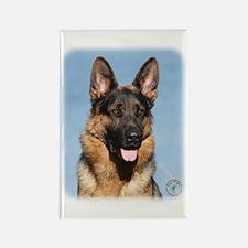 German Shepherd Dog 9Y554D-150 Rectangle Magnet