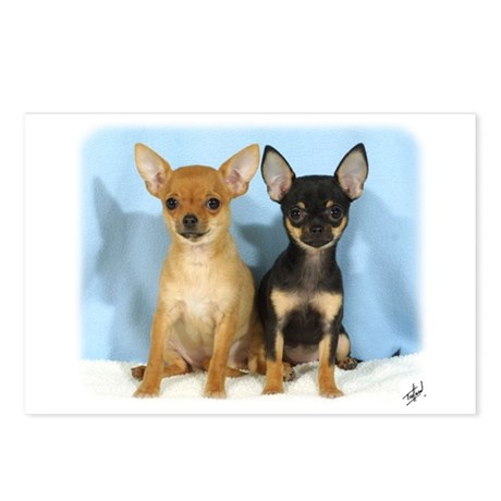 Chihuahuas 9W079D-011 Postcards (Package of 8)