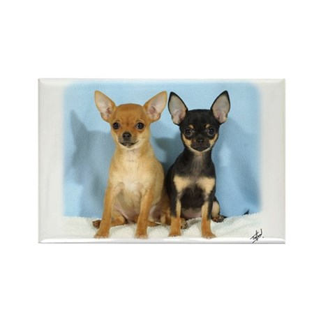 Chihuahuas 9W079D-011 Rectangle Magnet (10 pack)