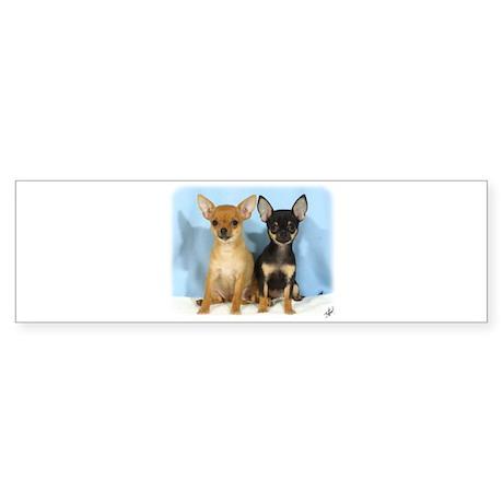 Chihuahuas 9W079D-011 Sticker (Bumper)