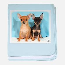 Chihuahuas 9W079D-011 baby blanket
