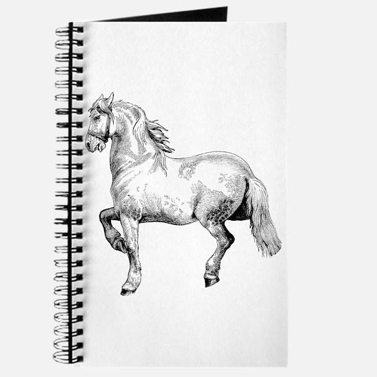 Horse Art IIlustration Journal