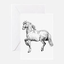 Horse Art IIlustration Greeting Cards (Pk of 20)