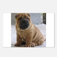 Unique Sharpei Postcards (Package of 8)