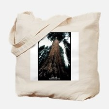 Sequoia National Park Tree Tote Bag