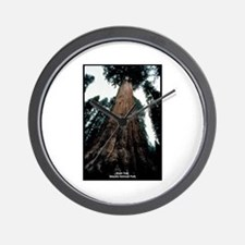 Sequoia National Park Tree Wall Clock
