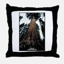 Sequoia National Park Tree Throw Pillow