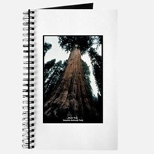 Sequoia National Park Tree Journal