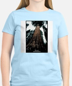 Sequoia National Park Tree (Front) Women's Pink T-