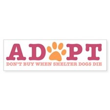 Cute Cat adoption Bumper Sticker