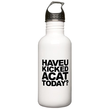Have U Kicked A Cat Today Stainless Water Bottle 1