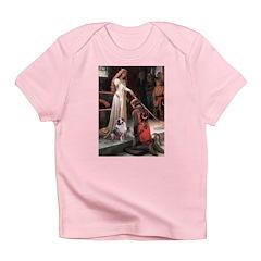 Accolade-AussieShep1 Infant T-Shirt