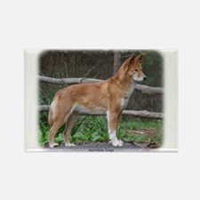 Australian Dingo 9Y209D-268 Rectangle Magnet (100