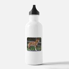 Australian Dingo 9Y209D-268 Water Bottle