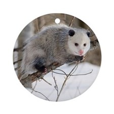 Opossum Love Ornament (Round)