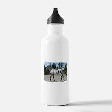 Cute Horses appaloosa Water Bottle