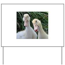 Unique Duck Yard Sign