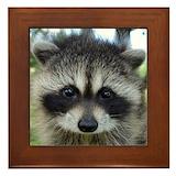Raccoon Framed Tiles