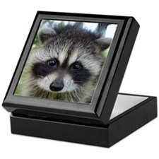 Unique Raccoon Keepsake Box