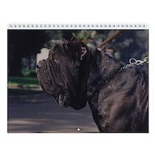 Neapolitan Mastiff Wall Calendar