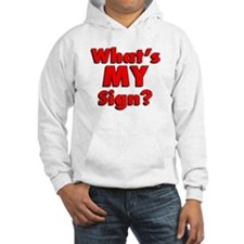 What IS my sign? Hoodie