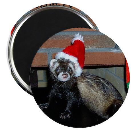 Ferret Christmas Magnet