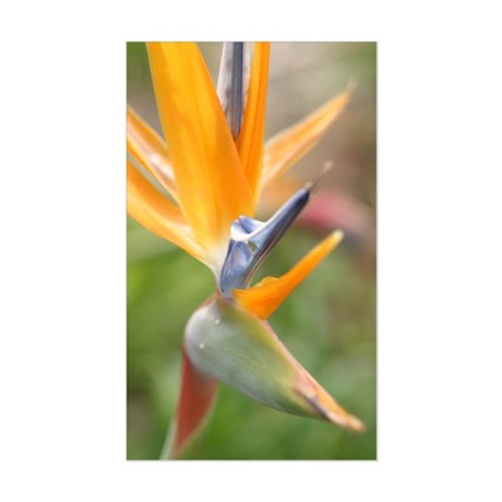 Bird of Paradise Sticker (Rectangle)