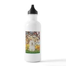 Spring / Bolgonese Water Bottle