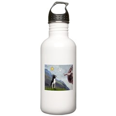 Creation of a Boston Ter Water Bottle