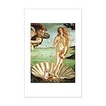 Venus/Puff Crested Mini Poster Print