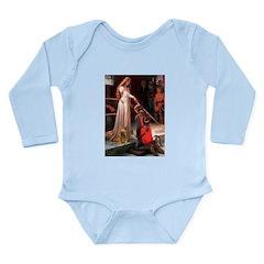 Accolade / Cocker (brn) Long Sleeve Infant Bodysui
