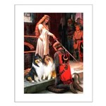 Accolade / Collie pair Small Poster