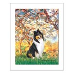 Spring / Collie Small Poster
