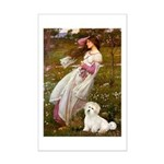Windflowers / Coton Mini Poster Print