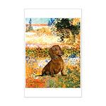 Garden (VG) & Dachshund Mini Poster Print