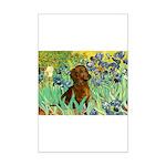 Irises & Dachshund Mini Poster Print