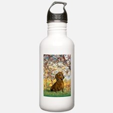 Spring / Dachshund Water Bottle
